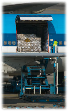 Cargo being unloaded from airplane